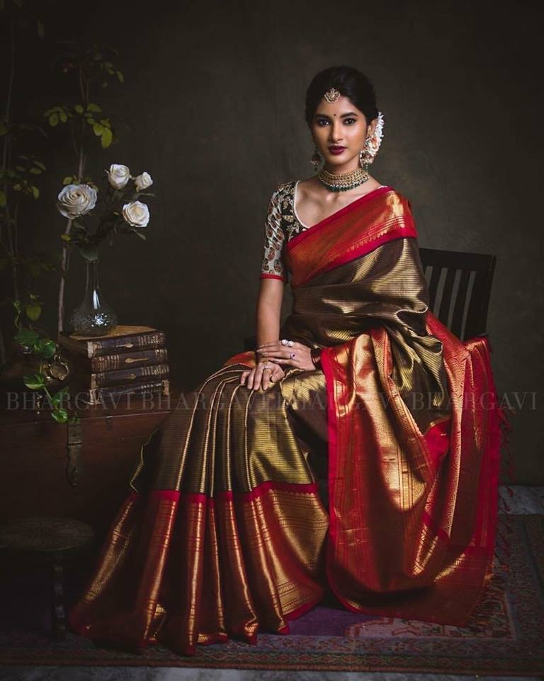 coffee brown kanchipuram silk saree in dark red border