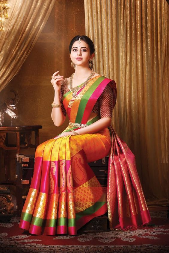 multi colour kanchipuram silk saree in small border