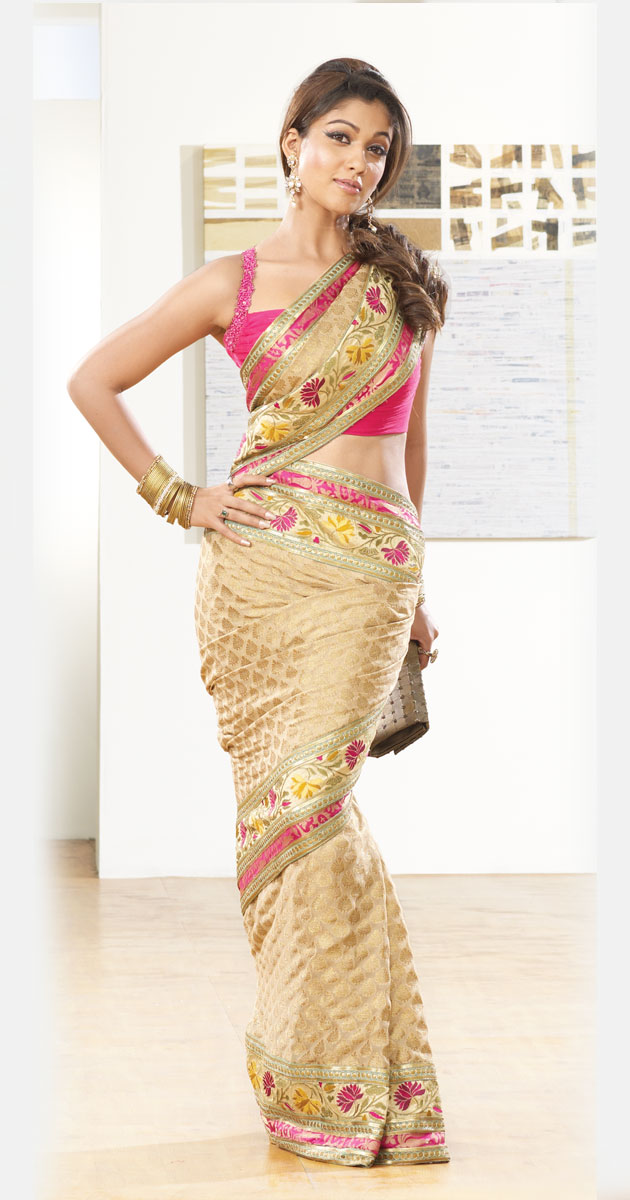 Nayanthara saree michigan